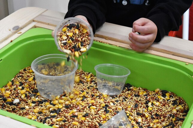 Pouring Seeds 2